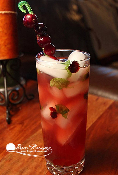Cranberry Mojito - copyright Rum Therapy