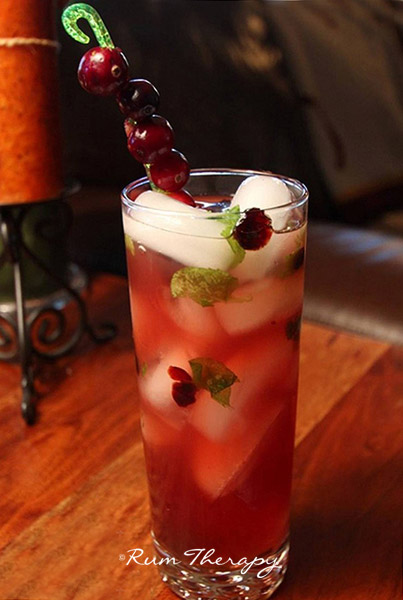 Cranberry mojitos for Best alcohol to mix with cranberry juice