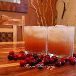Cranberry Rum Punch