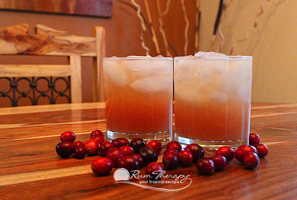 Cranberry Rum Punch - copyright Rum Therapy