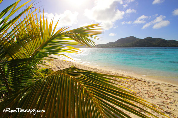 Sandy Island Carriacou by Rum Therapy