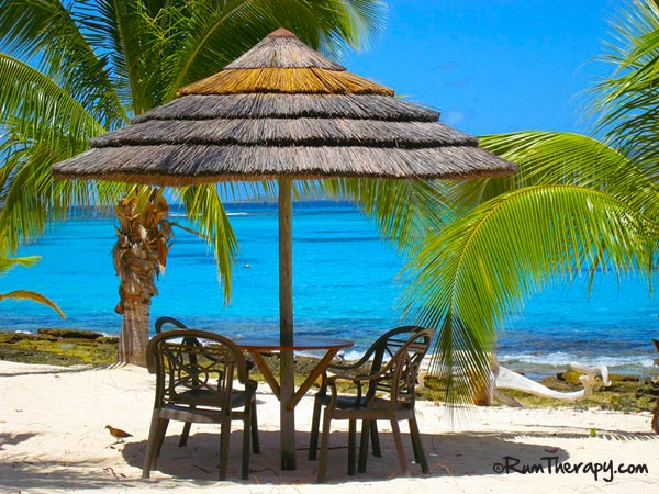 Palm-Island---O