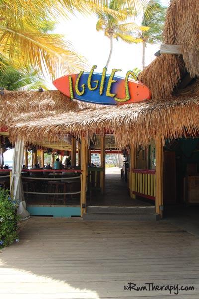 Iggie's-4-O