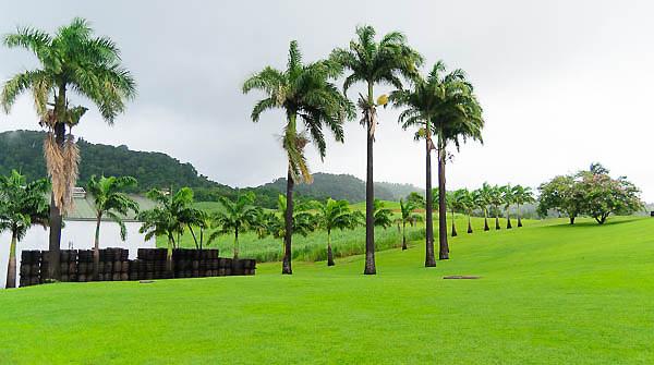Habitation Clement - Martinique