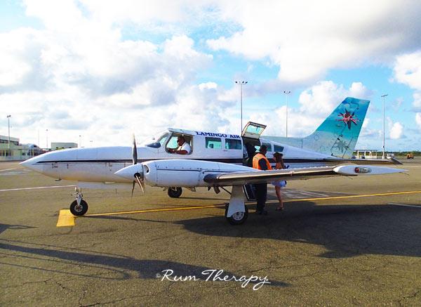 Plane-(600)-O