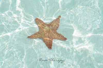 Exuma Cays - copyright Rum Therapy