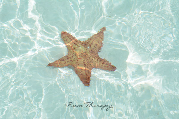 Exuma Cays - copyright Rum Therapy