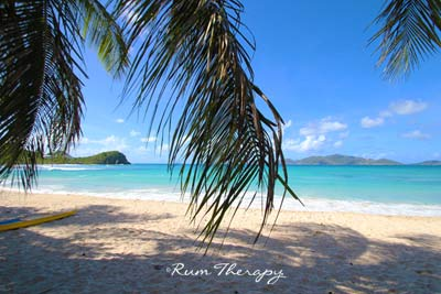 Smugglers Cove - copyright Rum Therapy