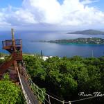 Tree Limin' Extreme – Ziplining in St. Thomas