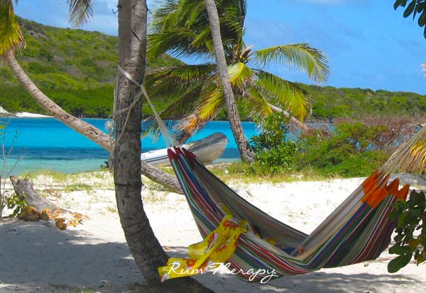 Tobago Cays copyright Rum Therapy