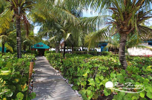 Kalooki's, a beach restaurant & bar in Providenciales sits on a pretty stretch of beach in Blue Hills, on the north side of the island. The location once was the site of a beach bar by the name of Horse-Eye Jacks, but was purchased by the current owners a few years ago
