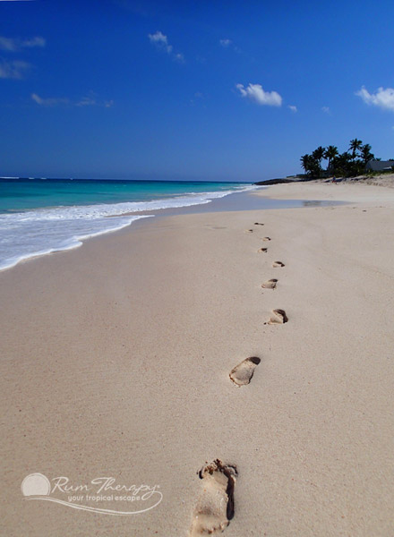 The Health Benefits of Walking On the Beach - copyright Rum Therapy