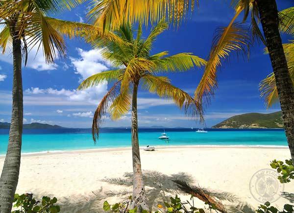 Sandy-Cay---Todd-Hayward-(600)-O