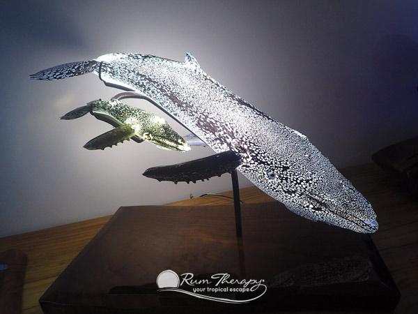 humpback-whale-600-o