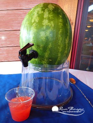 Watermelon Rum Punch